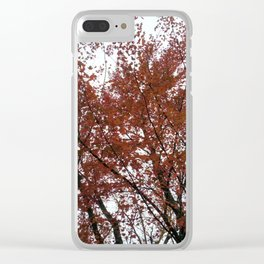 A tree in the fall. Clear iPhone Case