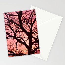 Evening Blush Stationery Cards