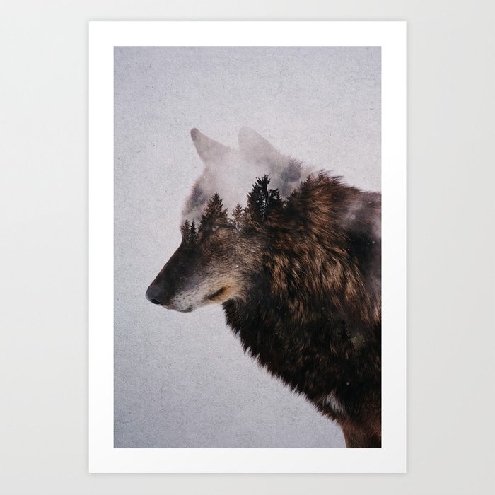 Discover the motif CANIS LUPUS by Andreas Lie as a print at TOPPOSTER