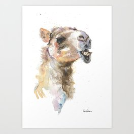 Moody Camel Art Print