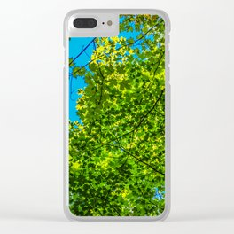 Sky through Trees Clear iPhone Case