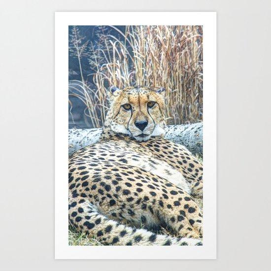 I See Spots Art Print