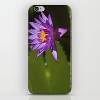 lotus flower iPhone & iPod Skins featuring Lotus by Maria Heyens