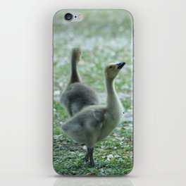 Zest for life iPhone Skin