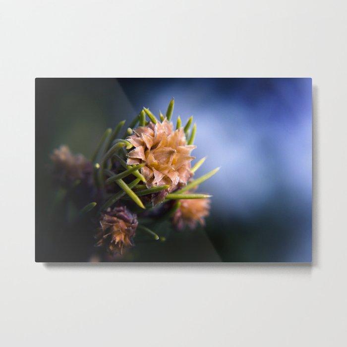 SpringCone#2 Metal Print