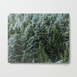 Mountain Mis // Dark Blue and Green Forest of Evergreen Pines Moody Lumberjack Dream Metal Print