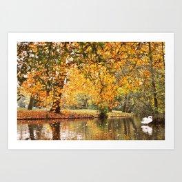 The swan Art Print