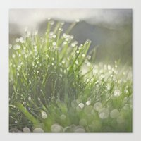 grass Canvas Prints featuring Grass by Pure Nature Photos