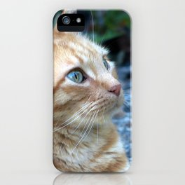 Ginger Boy iPhone Case