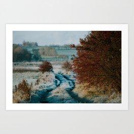 Frosty Contrasts Art Print