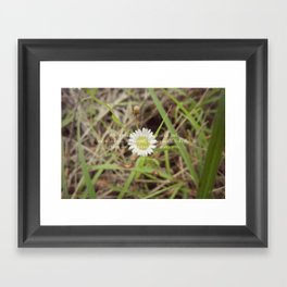 The Message Framed Art Print