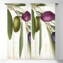 Olive Branch IV Blackout Curtain