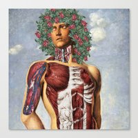 apollo Canvas Prints featuring Apollo by DIVIDUS
