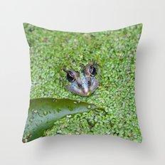 Frog's eyes 0473 Throw Pillow