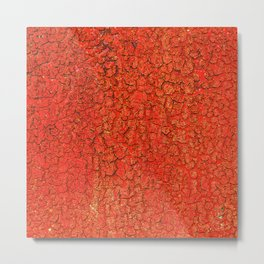 Red and Rusty Metal Print