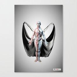 Anatomy Fashion Canvas Print