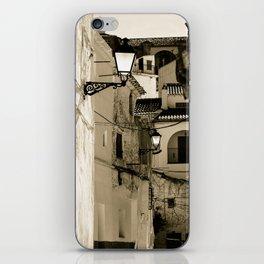 Gallivanting iPhone Skin