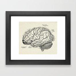 Vintage medical illustration of the human brain Framed Art Print
