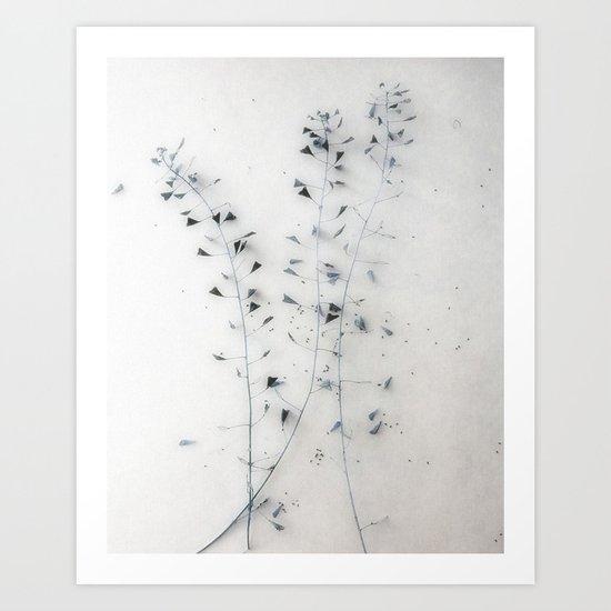 Straw I Art Print
