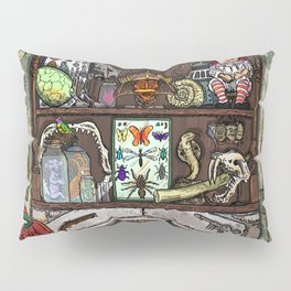 Creepy Cabinet of Curiosities Pillow Sham