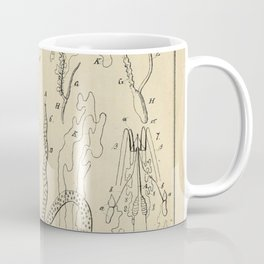 Microscopic Biology Coffee Mug