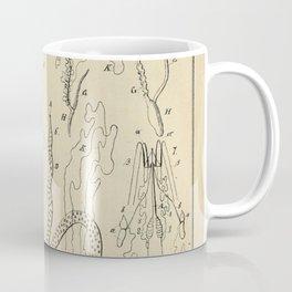 Microscopic Biology Coffee Mug