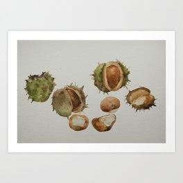 Spiky conkers Art Print