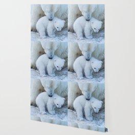 Polar Bear Mother and Cub portrait. Wallpaper