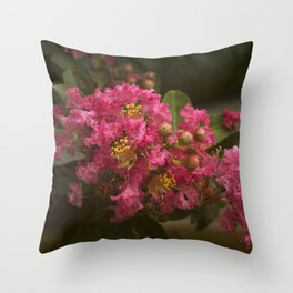 Pink Crepe Myrtle Blossom Throw Pillow