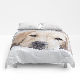 Golden labrador puppy Comforters