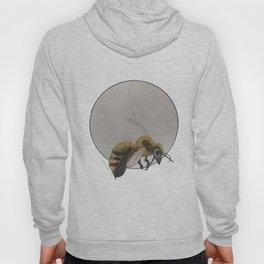 Wasp Hoody