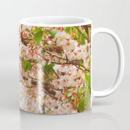 Cherry Blossom (sunny) Coffee Mug