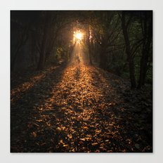 Autumn Fantasy : Let the Light Guide You Canvas Print