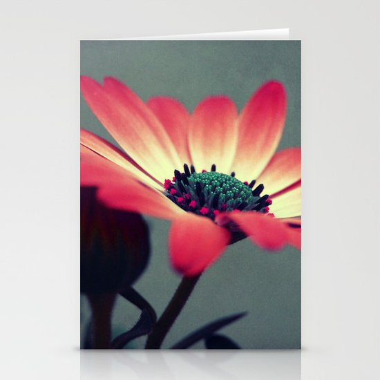 Look for your middle Stationery Cards