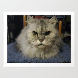 Niki The Cat Art Print