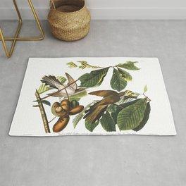 Yellow billed cuckoo, Birds of America, Audubon Plate 2 Rug