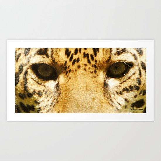 Jaguar Eyes Art Print