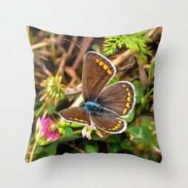 Common Blue Butterfly Polyommatus Icarus Throw Pillow