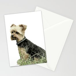 Dog | Portrait of Guinness | Yorkie | Pets Stationery Cards