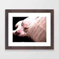 Sup Dawg Framed Art Print