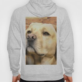 A Labrador. (Painting) Hoody