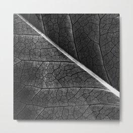 leaf /Agat/  Metal Print