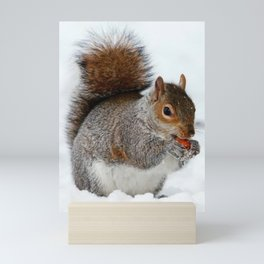 Winter Squirrel Mini Art Print