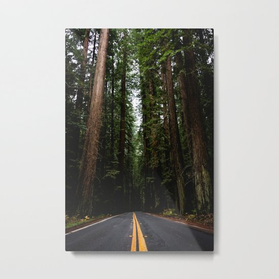 The Road to Wisdom Metal Print