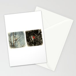 Male and Female Cardinals Stationery Cards