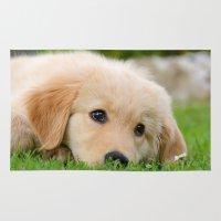 golden retriever Area & Throw Rugs featuring Golden Retriever puppy, cute dog by Katho Menden