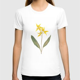 Glacier Lily - Yellow Mountain Wildflower T-shirt