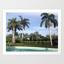 palm trees on a summer afternoon Art Print
