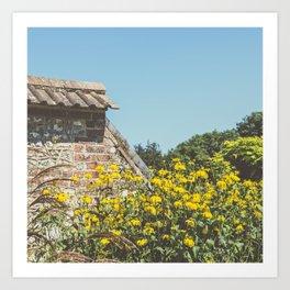 English Walled Garden High Summer Art Print