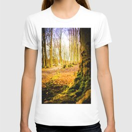 Moss Covered Tree Stump Hiking Path Forest bright T-shirt